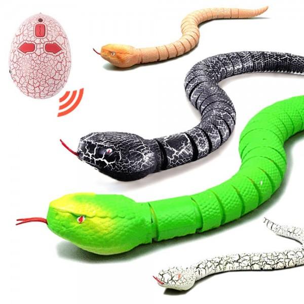 Змея на ИК